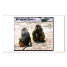 Hamadryas Baboon Photo Rectangle Decal