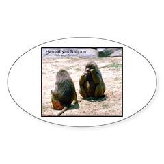 Hamadryas Baboon Photo Oval Decal