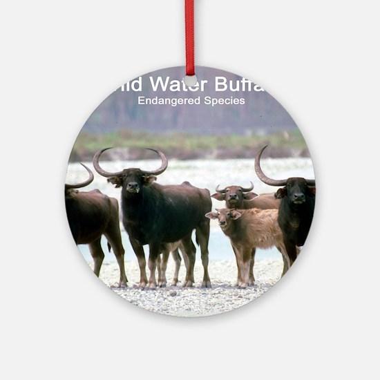 Wild Water Buffalo Photo Ornament (Round)