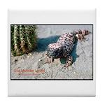 Gila Monster Lizard Photo Tile Coaster