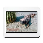 Gila Monster Lizard Photo Mousepad
