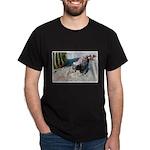 Gila Monster Lizard Photo (Front) Black T-Shirt