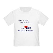 Charter Schools T