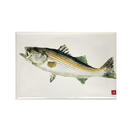 Striped Bass Gyotaku Rectangle Magnet (10 pack)