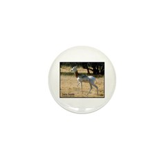 Dama Gazelle Photo Mini Button (10 pack)