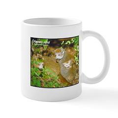 Crowned Lemur Photo Mug