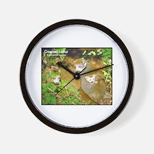Crowned Lemur Photo Wall Clock