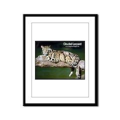 Clouded Leopard Photo Framed Panel Print