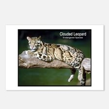 Clouded Leopard Photo Postcards (Package of 8)