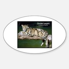 Clouded Leopard Photo Oval Decal