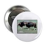 Gaur Bulls Photo Button