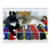 Cat from humane society Wall Calendars