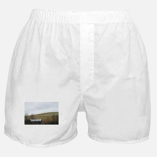 Gil Warzecha - Travel Boxer Shorts