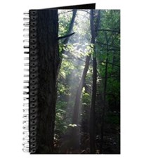 Gil Warzecha - nature photogr Journal