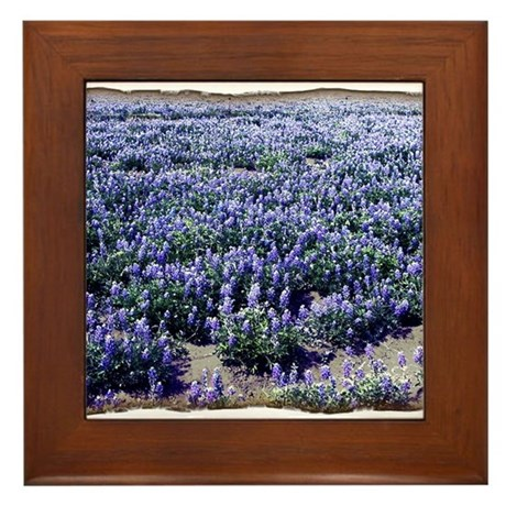 BlueBonnets Framed Tile