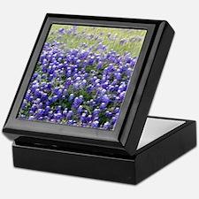 Texas Field of Blue Keepsake Box