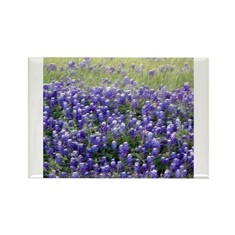 Texas Field of Blue Rectangle Magnet