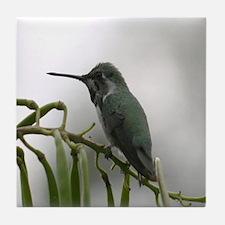 Tile Coaster-Hummingbird