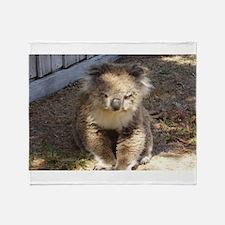 Cute Wild Koala Throw Blanket