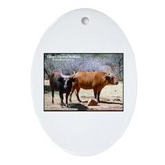 Dwarf Forest Buffalo Photo Oval Ornament
