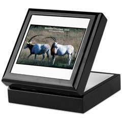 Scimitar Horned Oryx Photo Keepsake Box