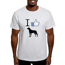 Greater Swiss Mountain T-Shirt