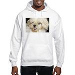My Shitzu Baby Hooded Sweatshirt
