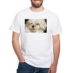 My Shitzu Baby White T-Shirt