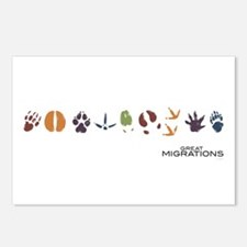 Animal Prints Postcards (Package of 8)
