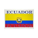 Ecuador Ecuadorian Flag Rectangle Magnet (100 pack