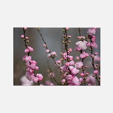 Cute Flowering Rectangle Magnet