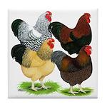 Wyandotte Rooster Assortment Tile Coaster