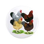 "Wyandotte Rooster Assortment 3.5"" Button"