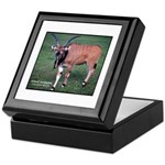 Eland Antelope Photo Keepsake Box