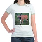Eland Antelope Photo (Front) Jr. Ringer T-Shirt