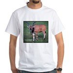 Eland Antelope Photo White T-Shirt