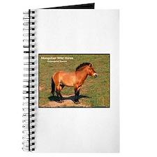 Mongolian Wild Horse Photo Journal