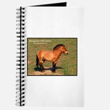 Mongolian Wild Horse Photo Journal