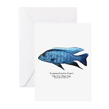 Sciaenochromis fryeri Greeting Cards (Pk of 10