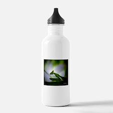 Praying Mantis Water Bottle