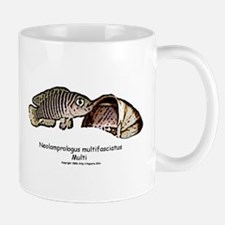 Neolamprologus Multifasciatus Mug