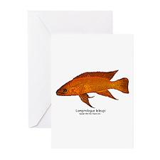 Lamprologus leleupi Greeting Cards (Pk of 10)