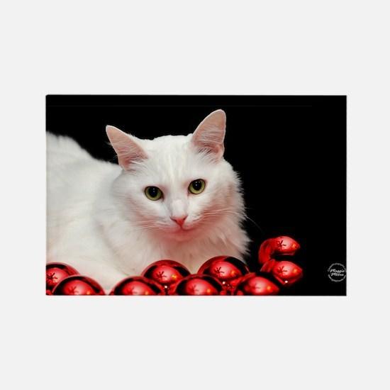 Xmas Cat Rectangle Magnet