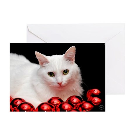 Xmas Cat Greeting Cards (Pk of 20)