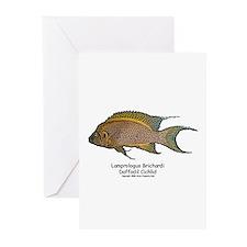 Lamprologus brichardi Greeting Cards (Pk of 10