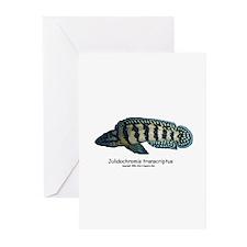 Julidochromis transcriptus Greeting Cards (Package