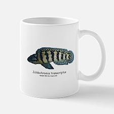 Julidochromis transcriptus Mug