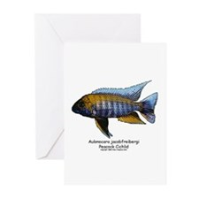 Aulonocara Jacobfriebergi Greeting Cards (Package
