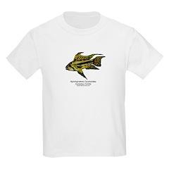 Apistogramma cacatuoides (Coc Kids T-Shirt