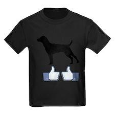 Patterdale Terrier T
